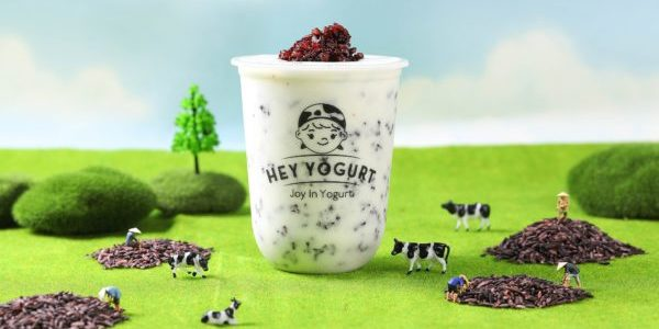 Hey Yogurt Offers 3-for-2 from 3 Feb - 29 Feb 2020 At Jurong Point | Why Not Deals 1 & Promotions