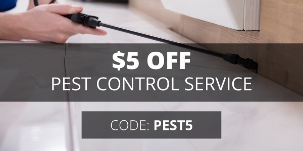 sendhelper Singapore $5 OFF PEST CONTROL SERVICE